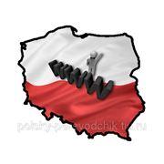 Перевод сайтов на польский язык и позиционирование в Польше фото