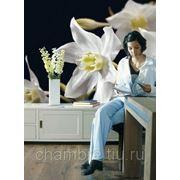 Белые цветы - Мадонна фото