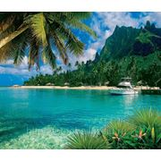 На островах ЭЛИТ 207х240 фото