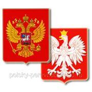 Устный русско-польский перевод (Skype и встречи) фото