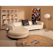 Чистка и полировка кожаной мебели фото