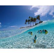 Туристические услуги, путешествия, туры по всему миру, отдых за границей, путевки фото