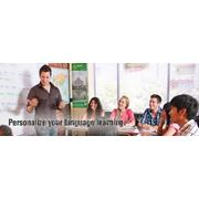 Языковые курсы в США (International Language Schools of Canada (USA branch) фото