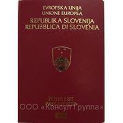 Европейское гражданство Словении фото
