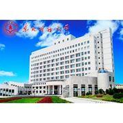 Северо-Восточный Финансово-Экономический Университет фото