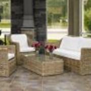Мебель из ротанга SIMONA фото