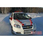 Аренда Chevrolet Aveo фото