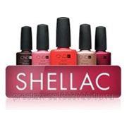 Продажа SHELLAC CND