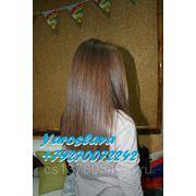 фото предложения ID 283753