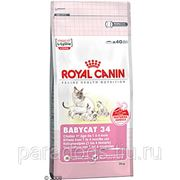Корм Royal Canin Д/Кошек Бэби Кэт 2кг. фото
