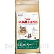 Корм Royal Canin Д/Кошек Мэйн Кун 2кг. фото