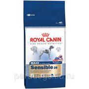 Корм Royal Canin Д/Собак Макси Сенсибл 4кг. фото
