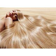Биоламинирование волос (фитоламинирование) фото