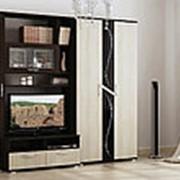 Мебель для гостиной Вега 4-2-3 фото