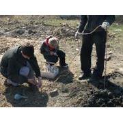 Подготовка материалов для проведения инженерно-экологических изысканий фото