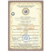 Система менеджмента охранраны здоровья и безопасности персонала OHSAS 18001:2007 фото