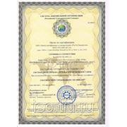 Cистемы менеджмента безопасности цепи поставок ISO 28000:2007 фото