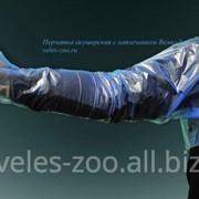 Перчатка ветеринарная акушерская с наплечиником ВЕЛЕС-ЗОО+ фото