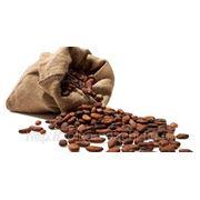 Какао-бобы фото