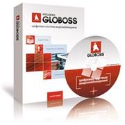 Программа для видеонаблюдения GLOBOSS 4 фото