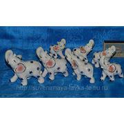 7 слонов фото