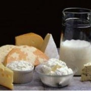 Закваски для пищевой промышленности и индустрии напитков фото