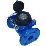 Счетчик воды ВСХН (Тепловодомер) Ду-50 фланц. фото