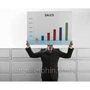 Создание Эффективного отдела продаж. фото