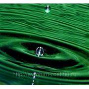 ANTIFREEZ КОНЦЕНТРАТ (зеленый) / налив фото