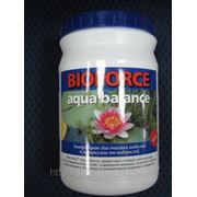 BIOFORCE Aqua Balance Биологическое средство для эффективной борьбы с цветением воды в водоемах и аквариумах фото