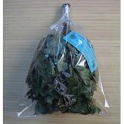 Веники для бани из канадского дуба, березы, мяты, полыни, ясеня, эвкалипта, можжевельника - оптом и в розницу фото