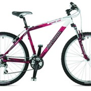 Велосипед Basic фото