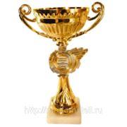 Кубок *Егирь* фото