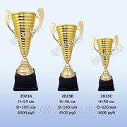 Кубок наградной (Артикул: 2023) фото