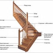 Двухэлементные раскладные лестницы фото