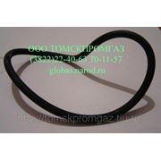 Кольцо уплотнительное 304-168-7-2 фото