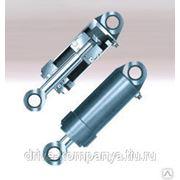 Гидроцилиндр ЕДЦГ 013.000-05 (Ц50х250) Lобщ=485 фото