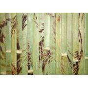 Бамбуковое полотно черепаховое ламель 15мм, фисташковое фото