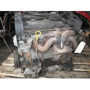 Бензиновый двигатель EYDC 1.8i 16V 85кВт /115л.с. Zetec для Ford Focus I 1998-2004г.в. , (EYDB, EYDD, EYDE, EYDF, EYDG, EYDI, EYDJ, EYDL) фото