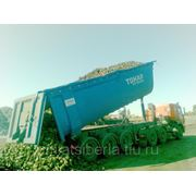 Самосвальный полуприцеп Тонар с надставными бортами для перевозки сельхозпродукции