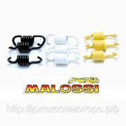 Комплект пружин сцепления malossi 29 7456 фото
