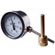 Термометры биметаллические радиальные ТБ-рос фото