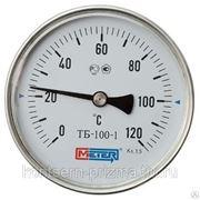 Термометр биметаллический из нержавеющей стали, осевой Метер ТБ-3 фото