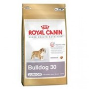 Корм для собак Royal Canin Bulldog Junior (для щенков английского бульдога) фото