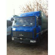 Зубренок МАЗ 437143-332