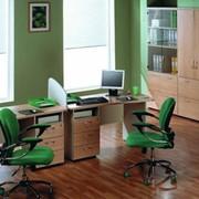 Офисная мебель Престиж Программист