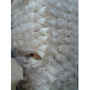 Бязь отбеленная плотность 130 г/м.кв. ширина 150 см фото