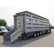 Свиновоз, полуприцеп для траспортировки скота, КАВА