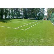 Строительство теннисных кортов в Чехове фото