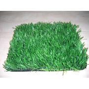 Искуственная трава фото